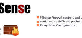 Pfsense content and URL Filtering – Section 2 Proxy Filter 3